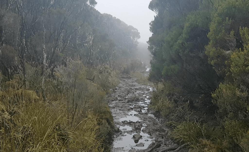 boue sentier grr2